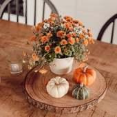 Octobre et le début de l'automne 💛 c'est reparti pour les boissons chaudes, les soupes de courges, les plaids sur le canapé, les flambées le soir🔥 cette saison a beaucoup de charme ! j'adore 😍  ●•●•●•● #dansmonatelier #octobre #october #automne #autumn #weekend #myhome #homesweethome #decor #instahome #cosy #potimarron #fleur #flower #orange