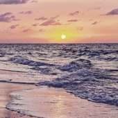 ☆ je ne serais pas à l'atelier cette semaine mais vous pouvez néanmoins passer commande sur la boutique : www. dansmonatelier.fr (lien direct dans la bio) elle restera ouverte pendant mon absence.   ☆ je m'occuperai de la creation de vos bijoux dès mon retour le 21 Août 😊  ☆ à très vite 💛 Aurélie   ●•●•●•●•●•● #dansmonatelier #ocean #oceanatlantique #plage #vague #bretagne #vendee #oceanview #oceanlife  #oceanlover #sea #oceanphotography #blueocean #blue #sealife #oceanvibes #beachview #coucherdesoleil #sunset