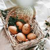 Joyeuse pâques à tous 🐣 Avec le soleil en prime 😎 Bonne chasse aux oeufs !!! ☆ Passez une belle journée ♡ ●•●•●•●•●•●• #dansmonatelier #paques #pâques #joyeusespaques #paques2020 #oeufdepaques #lapindepaques #chasseauxoeufs #oeufsdepaques #enfamille #happyeaster #happyeaster🐰 #easter #happyeastereveryone #eater2020 #eastereggs 📷@rozaneckaa